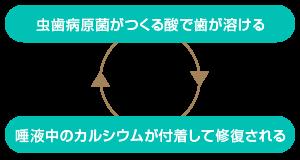脱灰と再石灰化のサイクル